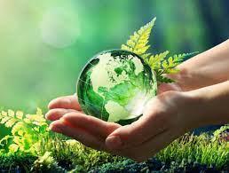 05 de junio Día del medio ambiente.